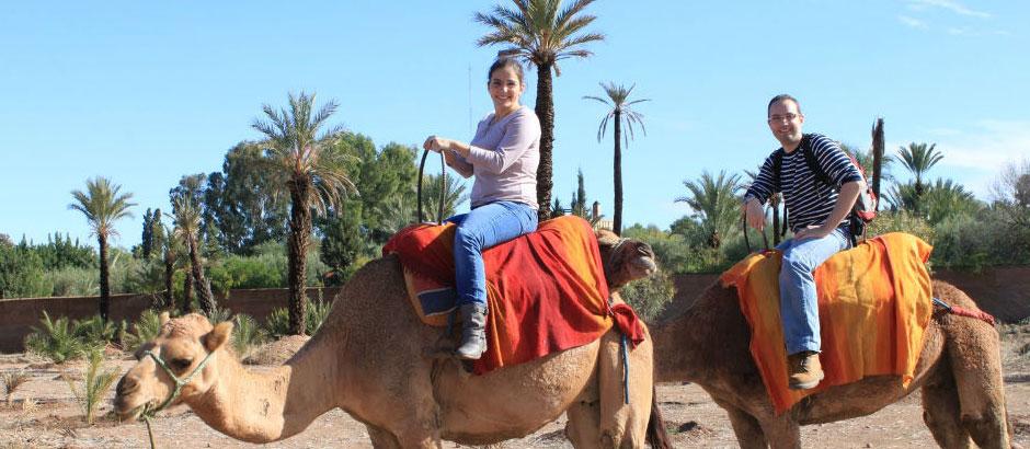camel riding marrakesh